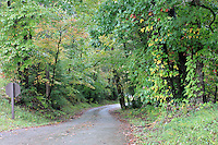 A narrow path passing through the cades cove of the smoky mountain national park in the fall.