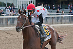 To Honor and Serve, Jose Lezcano up, wins the 2012 GIII Westchester Stakes.