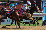 September 05, 2020: Thin White #8, ridden by Joel Rosario, wins the Funny Cide  S.  on New Yrk Bred Stakes day at Saratoga Race Course in Saratoga Springs, New York. Rob Simmons/CSM