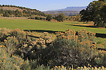 Farmland and pasture near the Sneffels Range, Colorado. John offers autumn photo tours throughout Colorado.