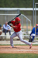 St. Louis Cardinals Edmundo Sosa (19) bats during a Minor League Spring Training game against the New York Mets on March 31, 2016 at Roger Dean Sports Complex in Jupiter, Florida.  (Mike Janes/Four Seam Images)
