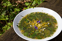 Kräutersuppe, Suppe aus Kräutern, Wildgemüse, Kräuter,  Outdoor, soup, Campen, camping
