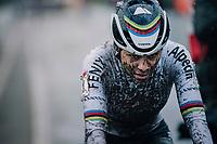 cx world champion Ceylin del Carmen Alvarado (NED/Alpecin-Fenix) crossing the finish line<br /> <br /> UCI cyclo-cross World Cup Dendermonde 2020 (BEL)<br /> Women's Race<br /> <br /> ©kramon