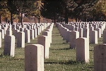 GRAVES IN LINE AT MILITARY CEMETERY