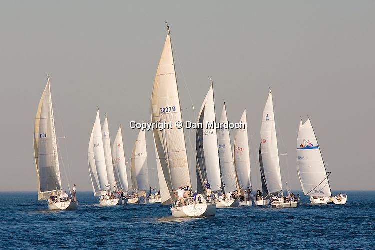 Fleet of sailboats racing