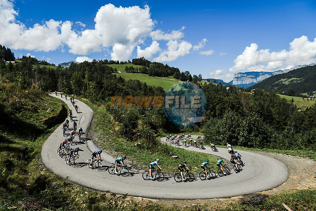 The peloton descend Col de Plan Bois during Stage 4 of Criterium du Dauphine 2020, running 157km from Ugine to Megeve, France. 15th August 2020.<br /> Picture: ASO/Alex Broadway | Cyclefile<br /> All photos usage must carry mandatory copyright credit (© Cyclefile | ASO/Alex Broadway)