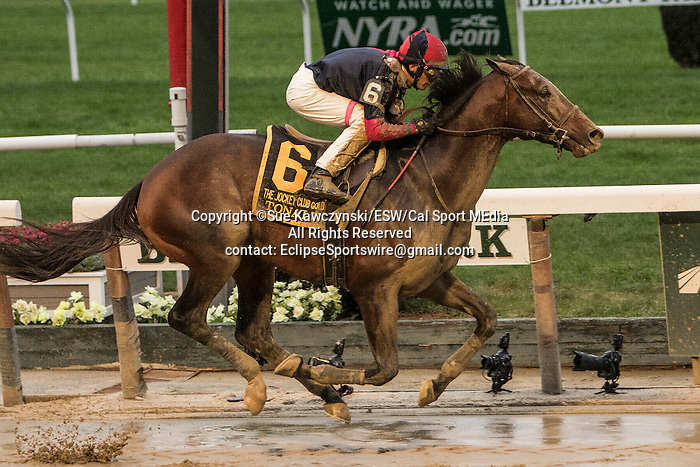 """October 3, 2015:  Tonalist with John Velazquez win the Grade I Jockey Club Gold Cup, a """"Win & You're In"""" event, for 3-year olds & up, going 1 1/4 mile at Belmont Park.  Trainer Christophe Clement. Owner Robert Evans. Sue Kawczynski/ESW/CSM"""