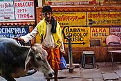 A typical street scene in the ancient city of Varanasi in Uttar Pradesh, India. Photograph: Sanjit Das/Panos