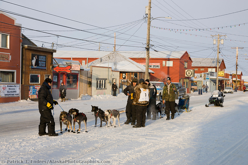Musher Fred Napoka gets his dogs ready on Front Street in Nome for the start of the 2008 All Alaska Sweepstakes 100 year commemorative sled dog race.