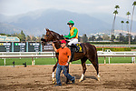 ARCADIA, CA - FEBRUARY 10: Flavien Prat and Om at Santa Anita Park on February 10, 2018 in Arcadia, California. (Photo by Alex Evers/Eclipse Sportswire/Getty Images)