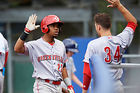 Greeneville Reds designated hitter Reniel Ozuna (27) is congratulated by Mike Siani (34) as he returns to the dugout after hitting a home run in the top of the third inning during the second game of a doubleheader against the Princeton Rays on July 25, 2018 at Hunnicutt Field in Princeton, West Virginia.  Greeneville defeated Princeton 8-7.  (Mike Janes/Four Seam Images)