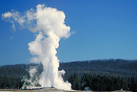 Old Faithful geyser erupting in Yellowstone National Park. Yellowstone National Park Wyoming USA.