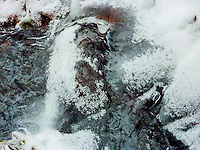 """OLD MAN WINTER PRAYS""<br />