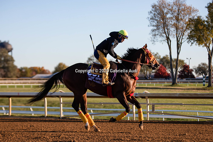 November 4, 2020: Big Runnuer, trained by trainer Victor Garcia, exercises in preparation for the Breeders' Cup Turf Sprint at Keeneland Racetrack in Lexington, Kentucky on November 4, 2020. Gabriella Audi/Eclipse Sportswire/Breeder's Cup/CSM