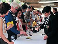 Wine tasting festival in Greve in Chianti, Ital