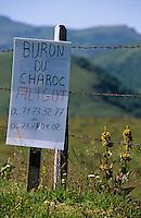 Europe/France/Auvergne/15/Cantal/Parc Naturel Régional des Volcans/Massif du Plomb du Cantal (1855 mètres): Panneau aligot au buron