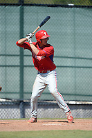Philadelphia Phillies catcher Jake Sweaney (4) during a minor league spring training game against the Pittsburgh Pirates on March 18, 2014 at the Carpenter Complex in Clearwater, Florida.  (Mike Janes/Four Seam Images)