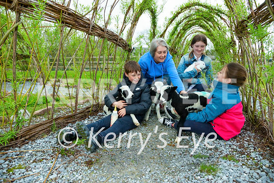 Shea (9) Elenor, Lilly (11) and Kitty (7) Wall getting ready to reopen Sandy Feet Farm on the 1st of May.