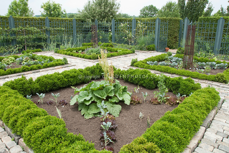 Upscale vegetable garden with cut stone walkway, trellised apple fruit trees and beautiful fence