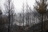 Gates, Oregon<br /> September 18, 2020<br /> <br /> Wildfires ravaged the forest near the town of Gates in central Oregon.
