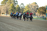 March 6, 2021: The post parade before the Honeybee Stakes at Oaklawn Racing Casino Resort in Hot Springs, Arkansas. ©Justin Manning/Eclipse Sportswire/CSM