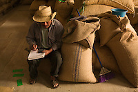 Organic coffee is the maon export of Tosepan.