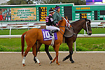 February 21, 2015: I'm a Chatterbox with Florent Geroux up in the Rachel Alexandra Stakes at the New Orleans Fairgrounds Risen Star Stakes Day. Steve Dalmado/ESW/CSM