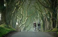 riding through The Dark Hedges in Northern Ireland