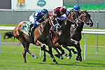 Better Lucky (no. 1, center), ridden by Eddie Castro and trained by Thomas Albertrani, wins the 18th running of the grade 2 Sands Point Stakes for three year old fillies on May 28, 2012 at Belmont Park in Elmont, New York.  (Bob Mayberger/Eclipse Sportswire)