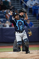 Wilmington Blue Rocks catcher Israel Pineda (11) on defense against the Hudson Valley Renegades at Dutchess Stadium on July 27, 2021 in Wappingers Falls, New York. (Brian Westerholt/Four Seam Images)
