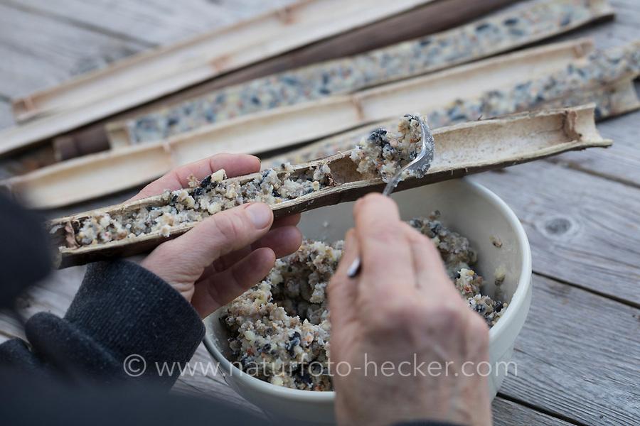 Hohle Pflanzenstängel für Vogelfutter, Stängel werden halbiert, um sie später mit Fettfutter zu füllen, Selbstgemachte Fettfuttermischung, Fettfutter aus Kokosfett, Sonnenblumenkernen, Erdnussbruch, Körnermix, Körnermischung, Sonnenblumenöl, Vogelfutter selbst herstellen, Vogelfutter selber machen, Vogelfutter selbermachen, Vogelfütterung, Fütterung, bird's feeding. Sachalin-Flügelknöterich, Sachalin-Staudenknöterich, Russischer Staudenknöterich, Flügelknöterich, Staudenknöterich, Sachalin-Knöterich, junge Triebe, Fallopia sachalinensis, Polygonum sachalinense, Reynoutria sachalinensis, Giant Knotweed, Sakhalin Knotweed