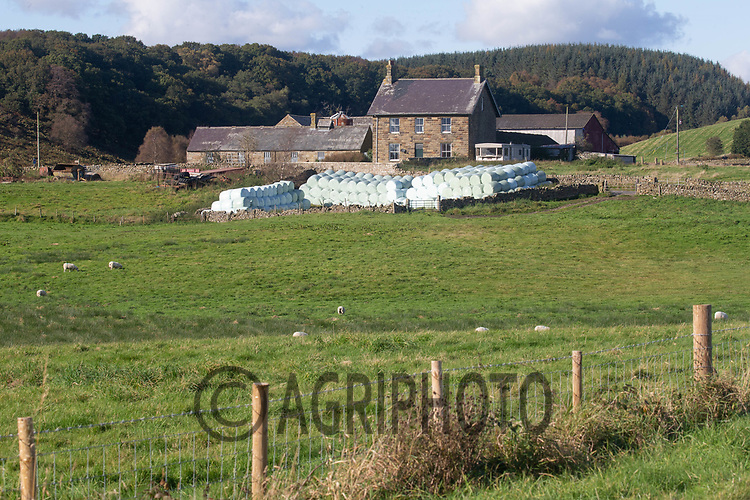 6.10.2020 Farmstead on the North Yorkshire Moors<br /> ©Tim Scrivener Photographer 07850 303986<br />      ....Covering Agriculture In The