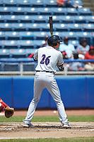 Craig Dedelow (26) of the Winston-Salem Dash at bat against the San Bernardos de Salem at Haley Toyota Field on June 30, 2019 in Salem, Virginia. The Dash defeated the San Bernardos 3-2. (Brian Westerholt/Four Seam Images)