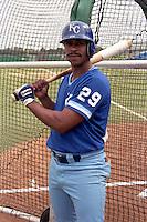 Kansas City Royals Rey Palacios during spring training circa 1989 at Baseball City Stadium in Davenport, Florida.  (MJA/Four Seam Images)