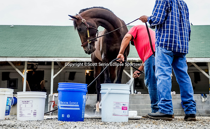 April 28, 2021: Midnight Bourbon, trained by trainer Steve Asmussen, gets a bath after exercising at Churchill Downs on April 29, 2021 in Louisville, Kentucky. Scott Serio/Eclipse Sportswire/CSM