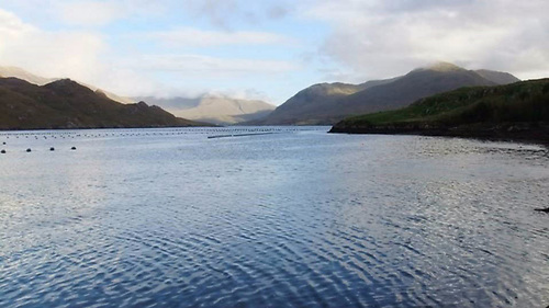 Killary Fjord Shellfish Limited has been awarded an EMFF grant of €37,913 for its total investment of €94,783 to increase efficiency and to provide a safe clean environment for packing shellfish at its Galway operation