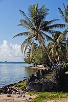 Modern sailing catamaran sails past palm lined beach at the ancient temple Taputapuatea Marae on Raiatea, French Polynesia