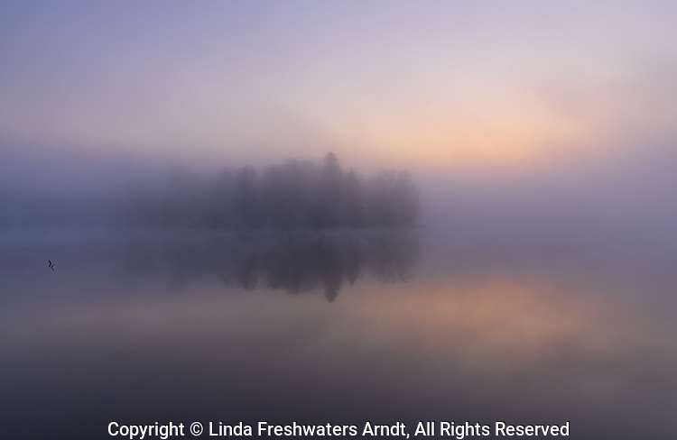 A foggy sunrise on Blaisdell Lake in northern Wisconsin.