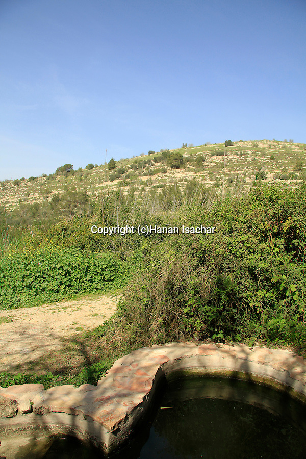 Israel, Jerusalem mountains, a spring at the foothill of Tel Ksalon