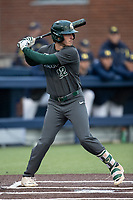 Michigan State Spartans pinch hitter Bailey Peterson (22) at bat in the NCAA baseball game against the Michigan Wolverines on May 7, 2019 at Ray Fisher Stadium in Ann Arbor, Michigan. Michigan defeated Michigan State 7-0. (Andrew Woolley/Four Seam Images)