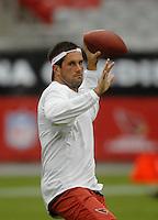 NFL 2007