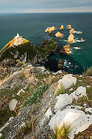 Nugget Point lighthouse with rocky islets, Catlins, Southland, New Zealand