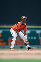GCL Orioles shortstop Carlos Baez (1) during a game against the GCL Rays on July 21, 2017 at Ed Smith Stadium in Sarasota, Florida.  GCL Orioles defeated the GCL Rays 9-0.  (Mike Janes/Four Seam Images)