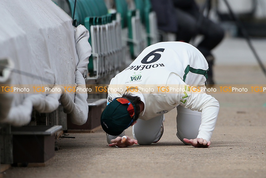 Gareth Roderick of Worcestershire searches for the ball under an area of seating during Essex CCC vs Worcestershire CCC, LV Insurance County Championship Group 1 Cricket at The Cloudfm County Ground on 8th April 2021