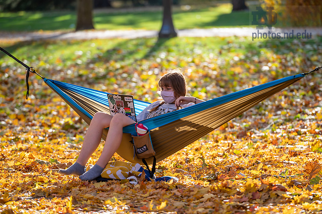 November 8, 2020; Student studying in a hammock, fall 2020 (Photo by Matt Cashore/University of Notre Dame)