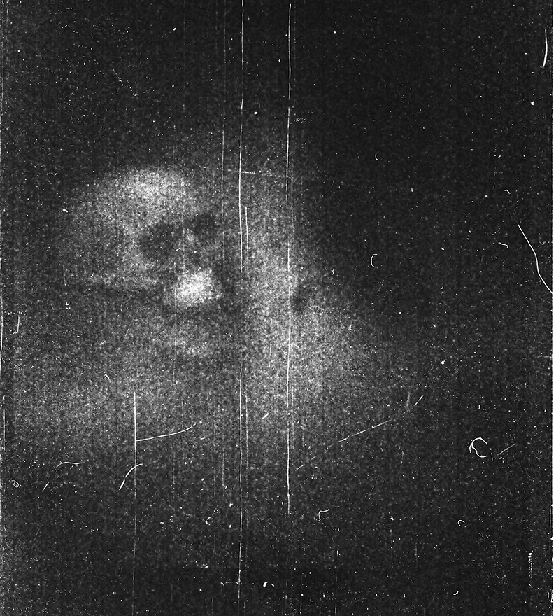 Skull.  Shot with Holga using Fuji Neopan 400 B&W film by Liisa Roberts