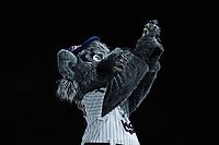 """Somerset Patriots mascot Sparky holds up a stuffed version of himself during the """"Simba Cam"""" promotion between innings of the game against the Altoona Curve at TD Bank Ballpark on July 24, 2021, in Somerset NJ. (Brian Westerholt/Four Seam Images)"""