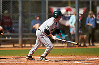 Dartmouth Big Green Michael Calamari (3) bats during a game against the Omaha Mavericks on February 23, 2020 at North Charlotte Regional Park in Port Charlotte, Florida.  Dartmouth defeated Omaha 8-1.  (Mike Janes/Four Seam Images)