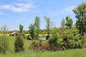 Yellow Field, Red Barn, Blue Sky