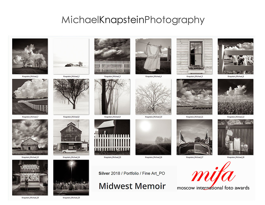 A portfolio of 20 images by Michael Knapstein won the Silver Award (second place) for Fine Art Portfolio in the Moscow International Foto Awards.